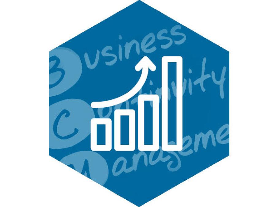 Business Continuity Management von SIUS Consulting